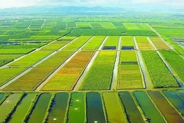 农业农村部答复化肥农药减量增效有关建议