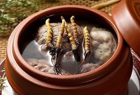 冬虫夏草炖肉