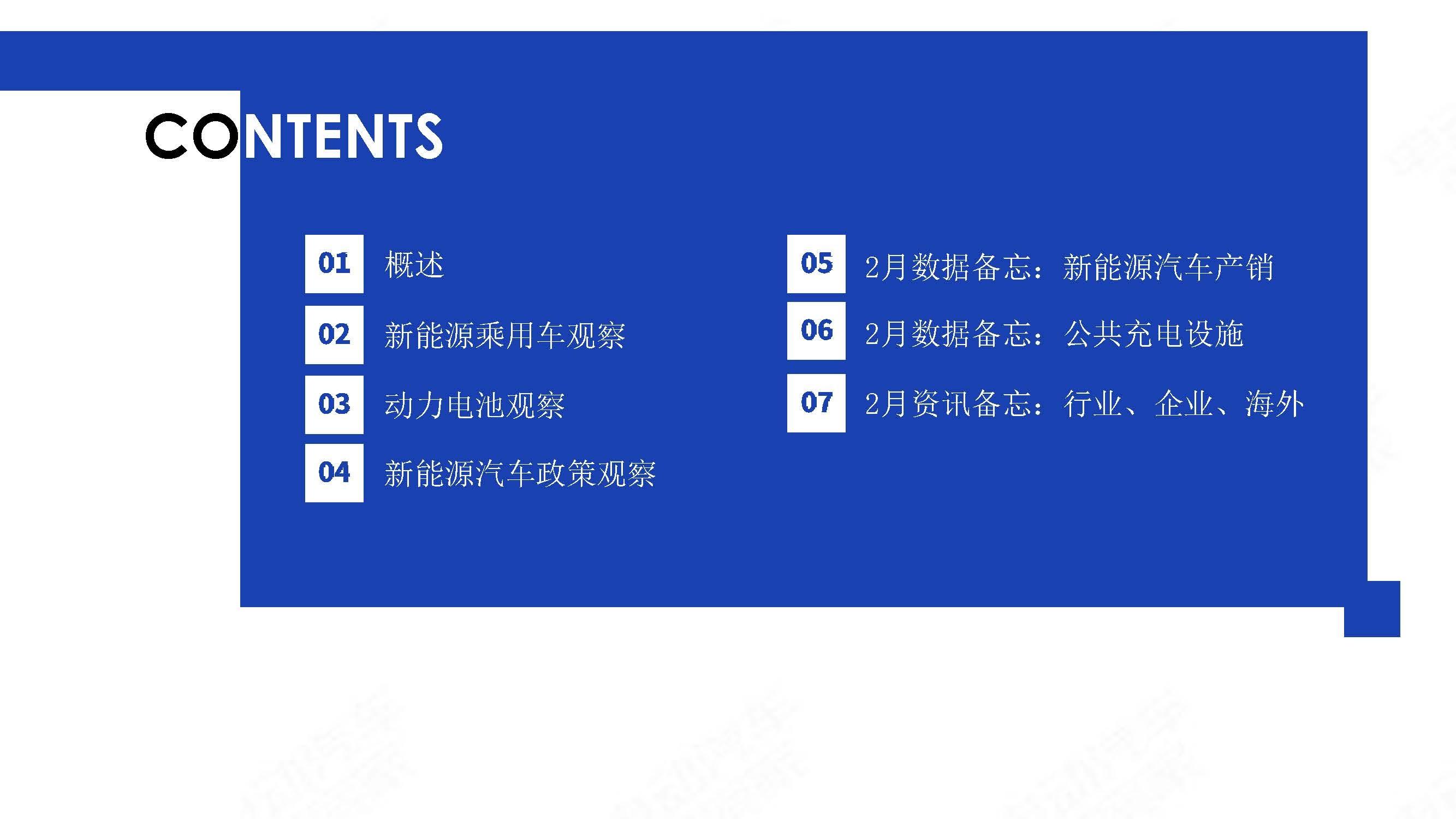 中国新能源汽车产业观察2020年2月简版_页面_02