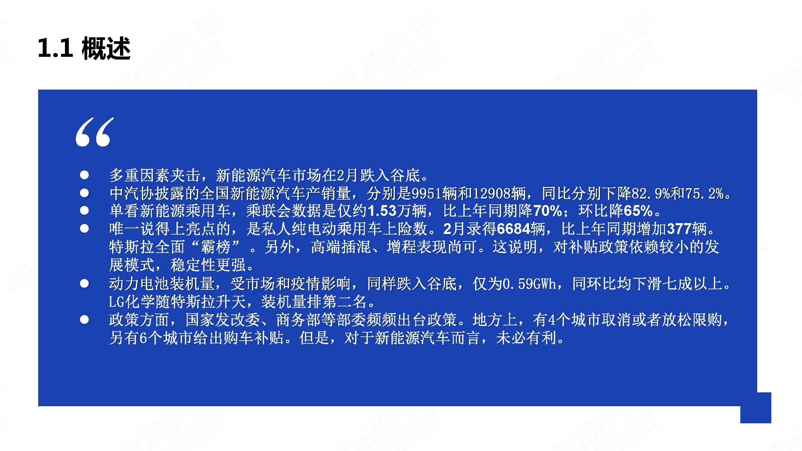 中国新能源汽车产业观察2020年2月简版_页面_04