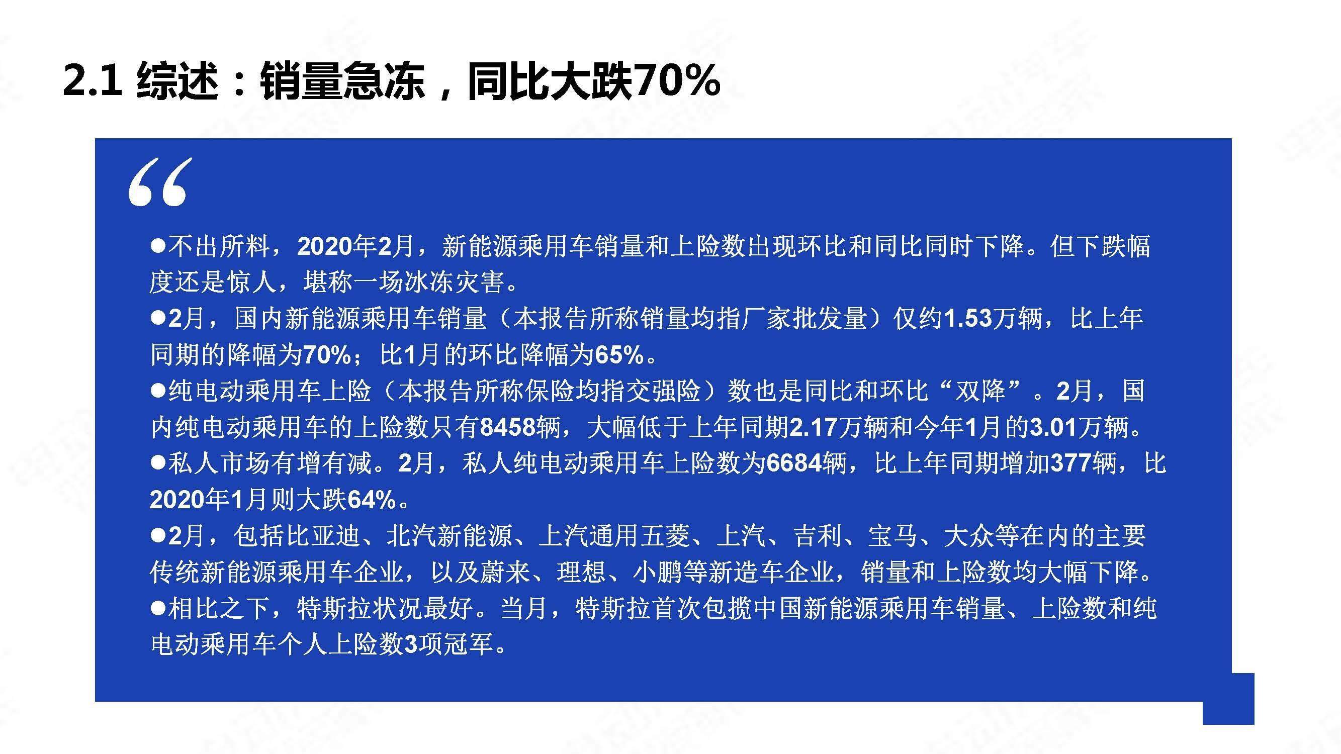 中国新能源汽车产业观察2020年2月简版_页面_06