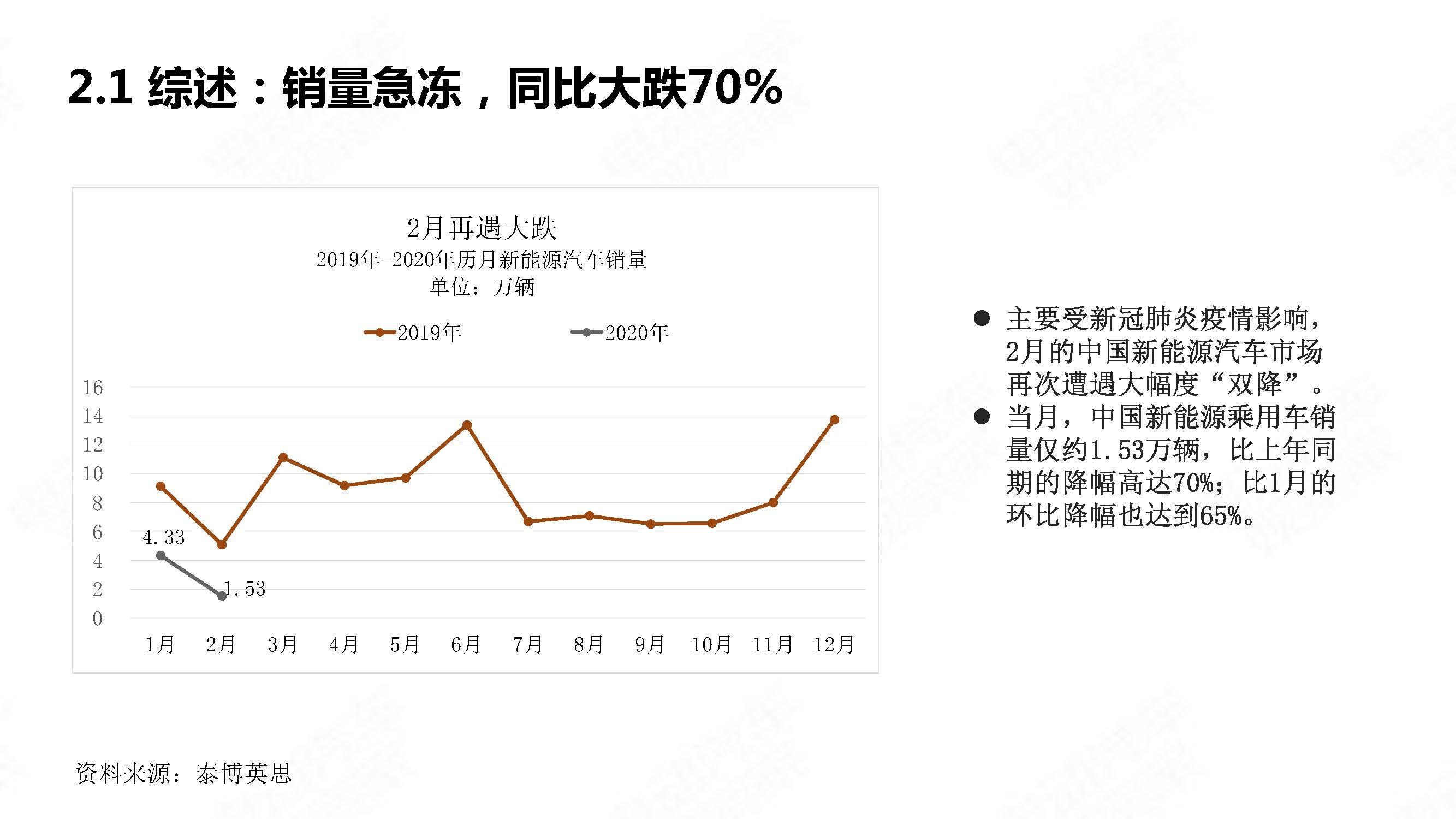 中国新能源汽车产业观察2020年2月简版_页面_07