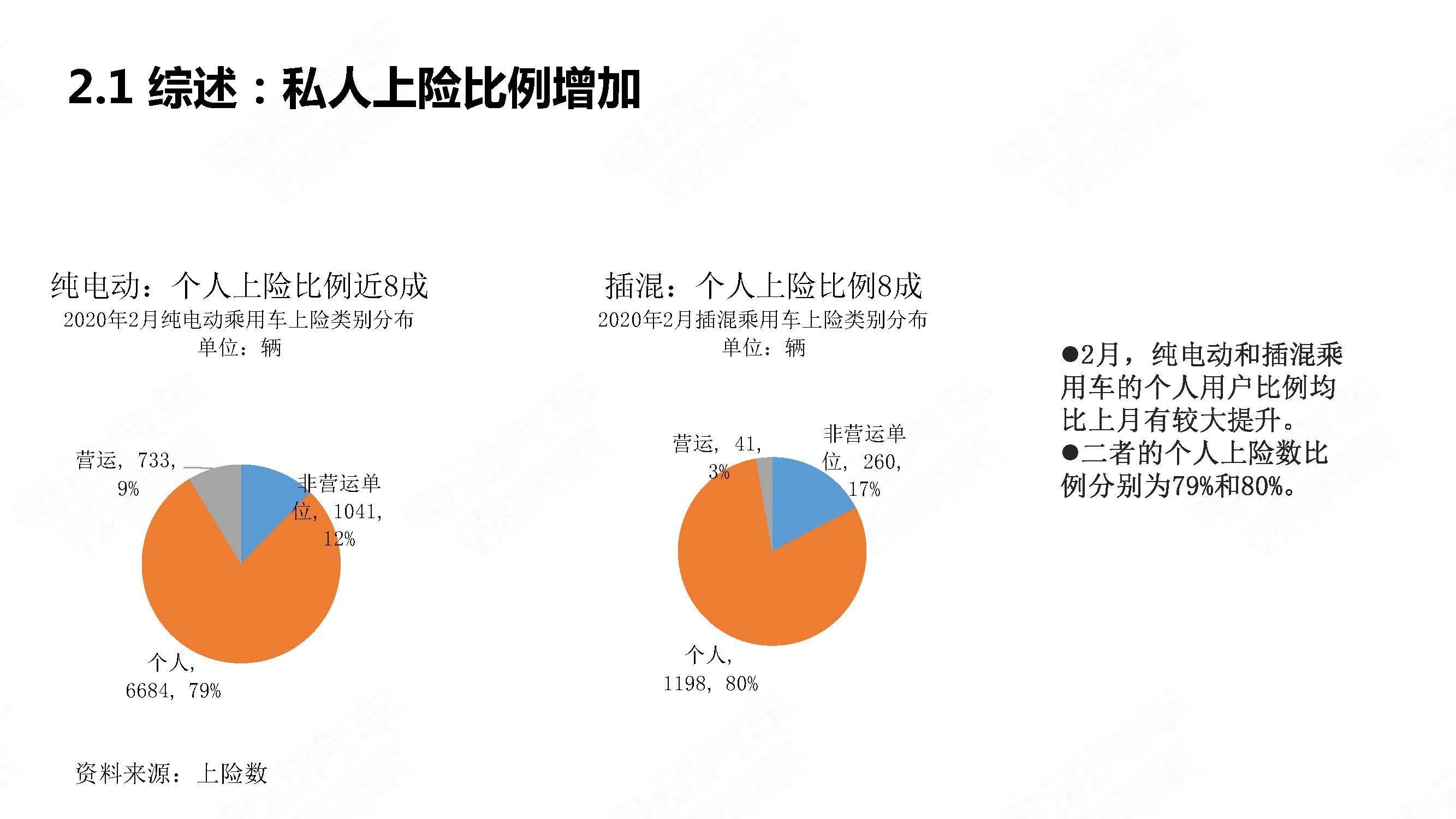 中国新能源汽车产业观察2020年2月简版_页面_10