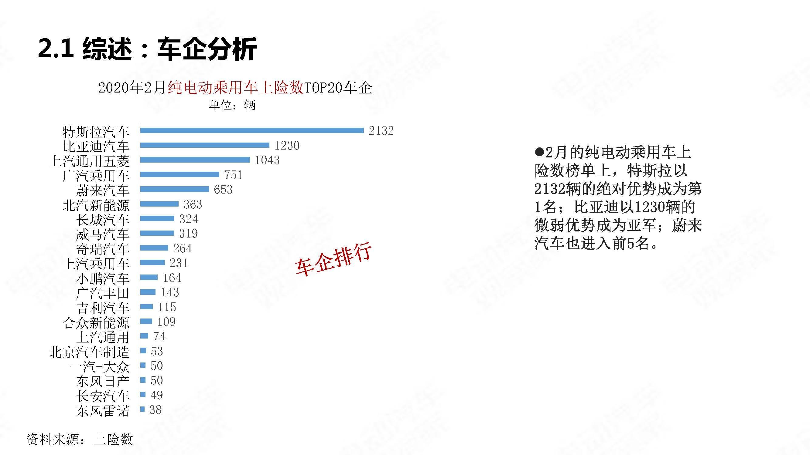 中国新能源汽车产业观察2020年2月简版_页面_13
