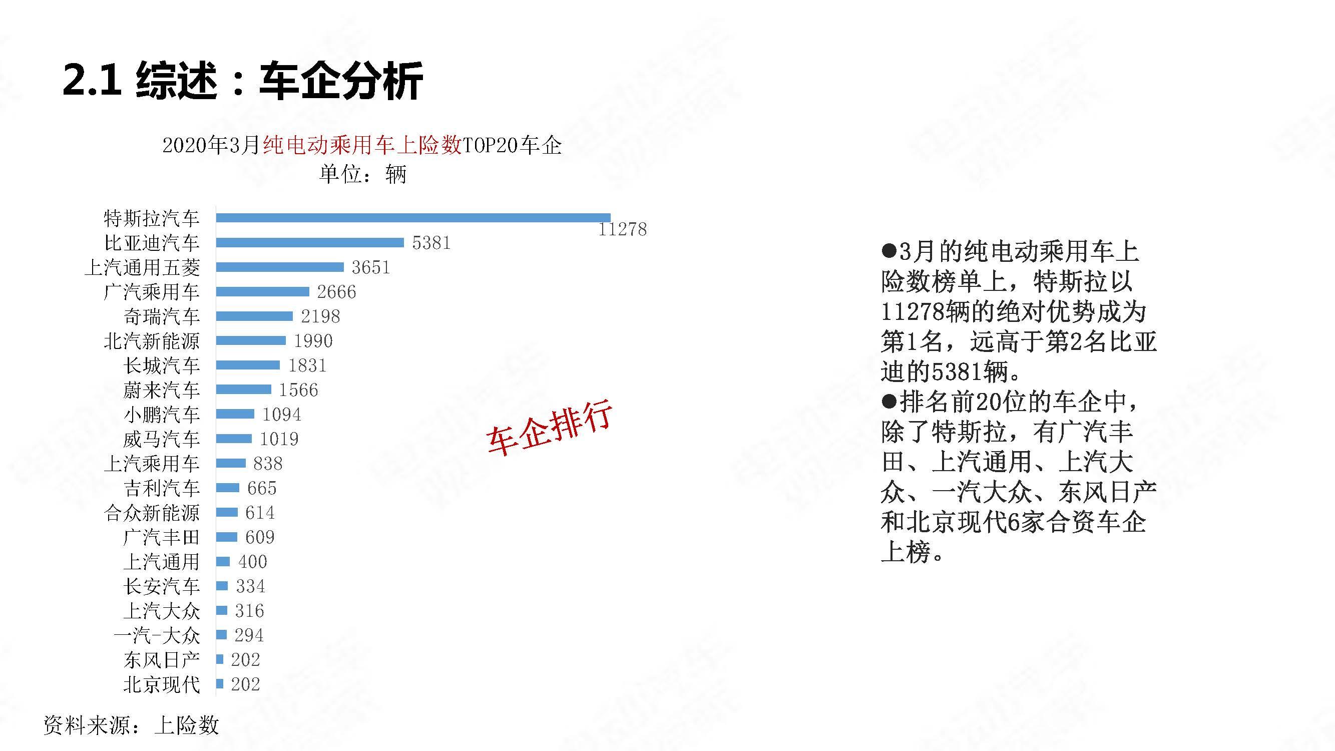 中国新能源汽车产业观察2020年3月简版_页面_13