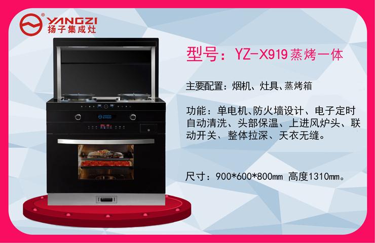 YZ-X919蒸烤