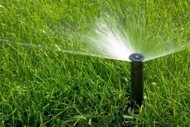 草坪如何延长绿期呢?