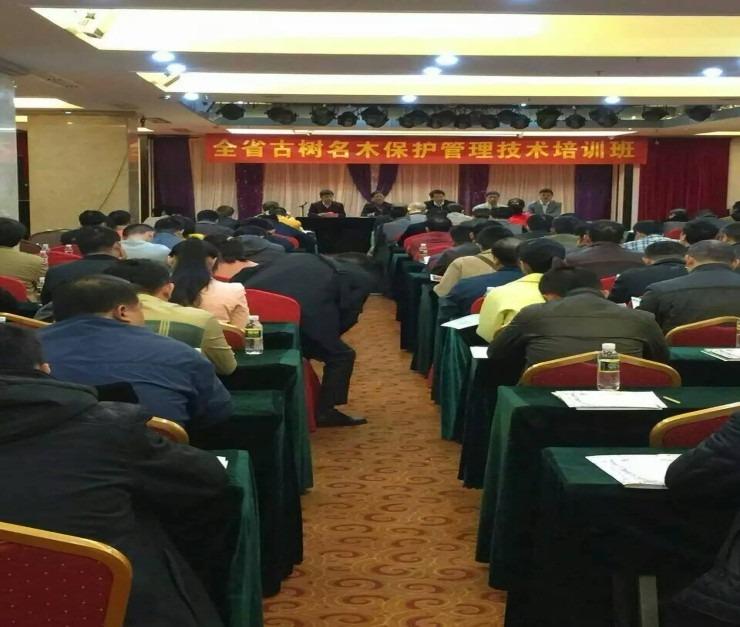 受邀在海南省全省古樹名木保護管理技術培訓會擔任主講嘉賓 接受電視台采訪