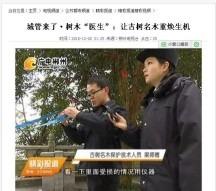 3湖南苏仙岭公园古树健康评估及修复-2