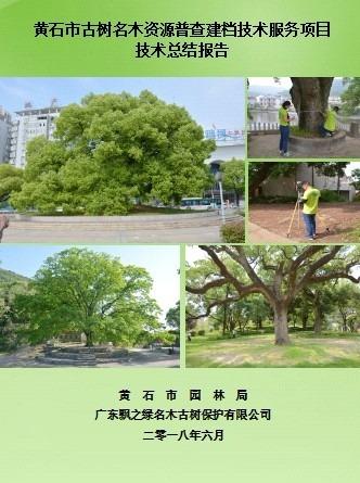 13湖北省黄石市古树名木资源普查建档项目1