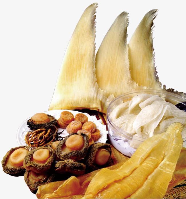 营养野生鱼翅