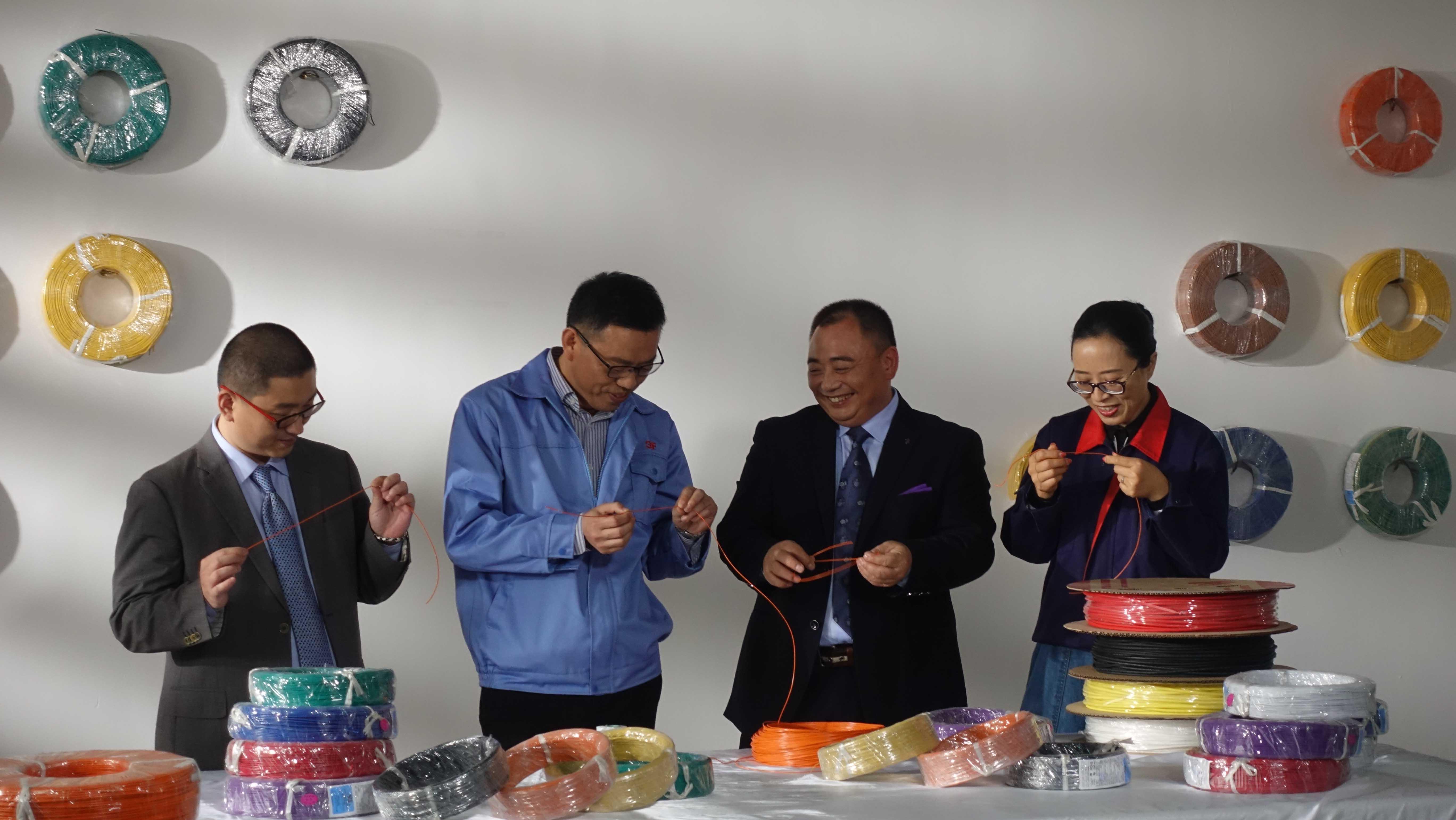 2008年北京奥运会主火炬点火用线的研发和生产制造   取得ISO/TS16949及QC080000国际管理体系认证。