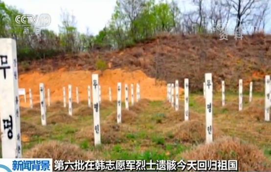 第六批在韩志愿军烈士遗骸今天回归祖国1