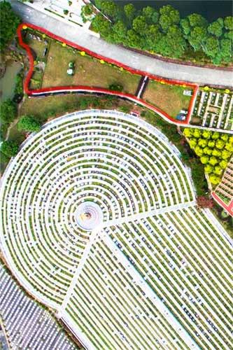俯拍艺术二区名人苑
