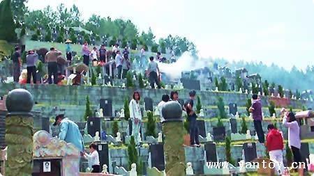万安园墓区清明 重阳祭祀景观