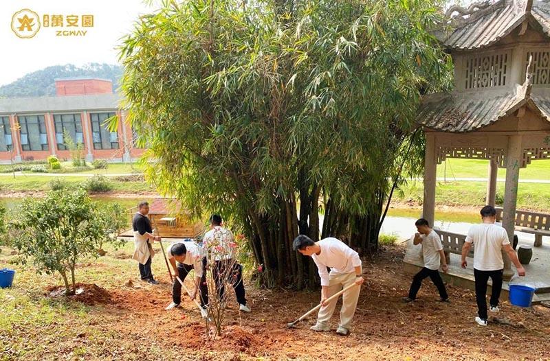 3植树节、播种希望,收获未来。.jpg