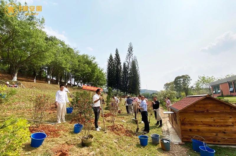 4植树节、播种希望,收获未来。.jpg