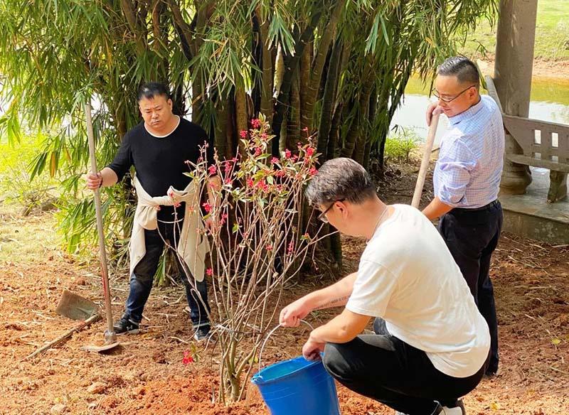 2组5植树节、播种希望,收获未来。800