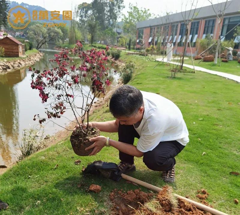 2组7植树节、播种希望,收获未来。.jpg