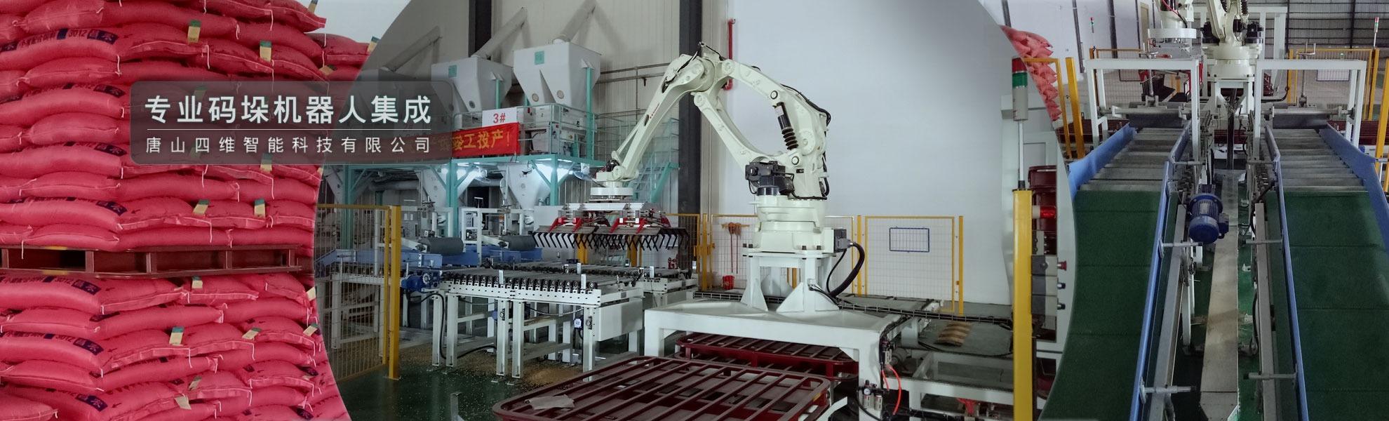 三线双抓码垛机器人系统