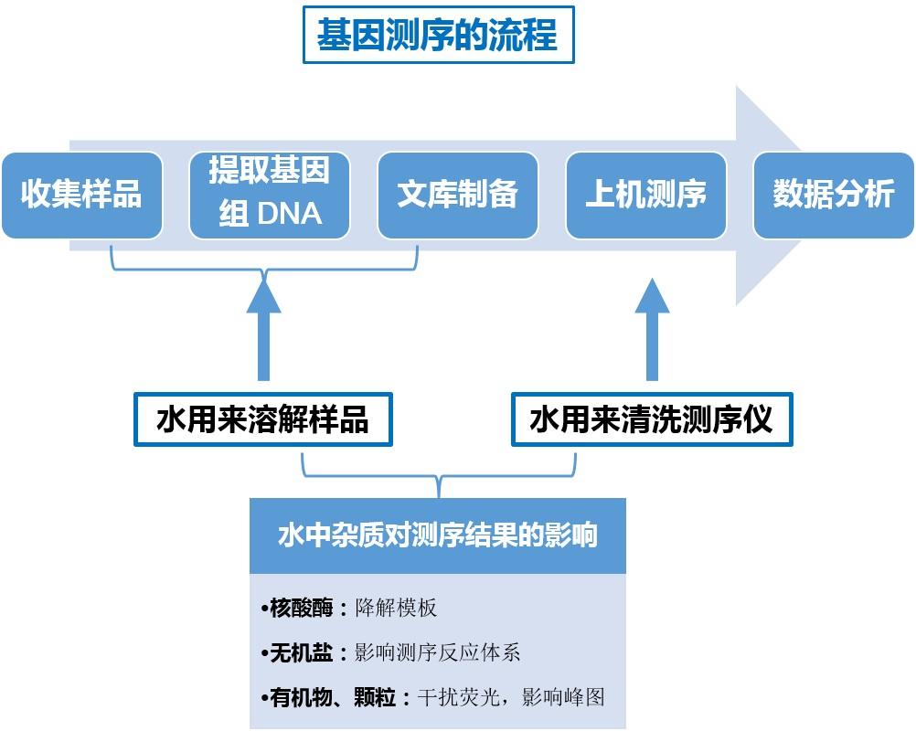 基因测序流程