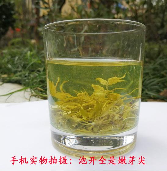 茅小叶霉茶