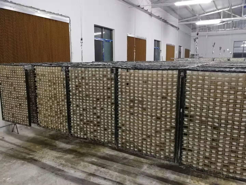 325孔塑框木质方格簇