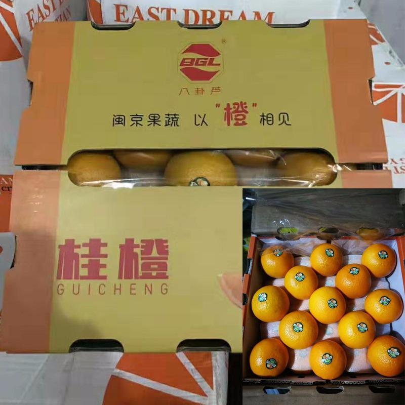 皮薄多汁桂橙25枚礼盒装12斤