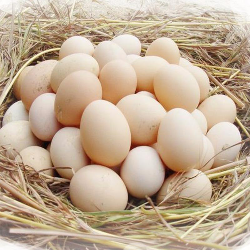 西得牛纯土鸡蛋30枚礼盒装包邮到家
