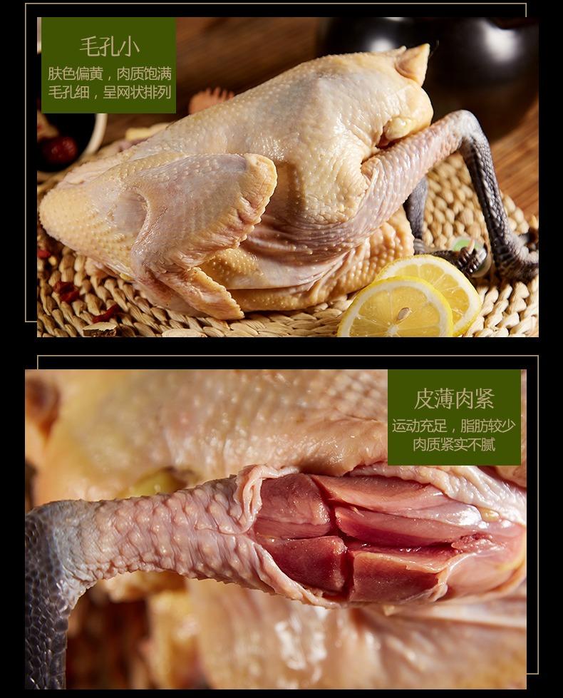 鸡肉详情7