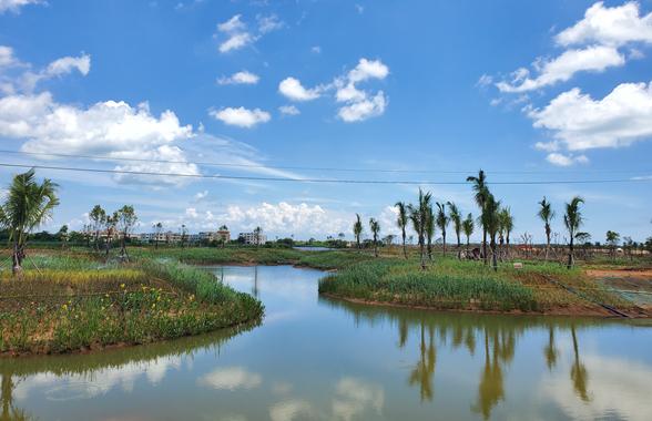 海口迈雅河区域生态修复项目