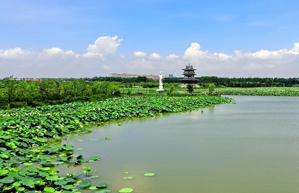 麻涌马滘河景观修复工程