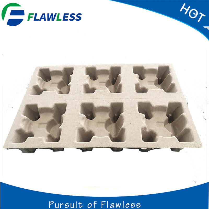 Biodegradable Molded Tray