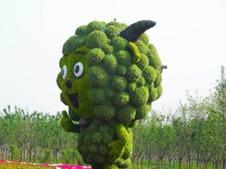动漫造型绿植绿雕
