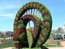 景觀綠植綠雕
