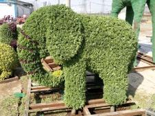 冬季立體綠雕