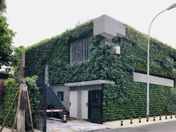 五里墩垃圾站立体绿化