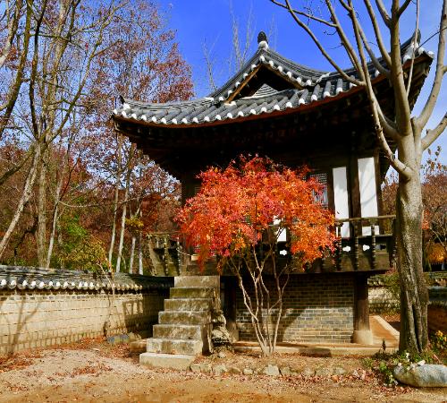 """""""行海外 观世界""""之韩国文化探访实践课程"""