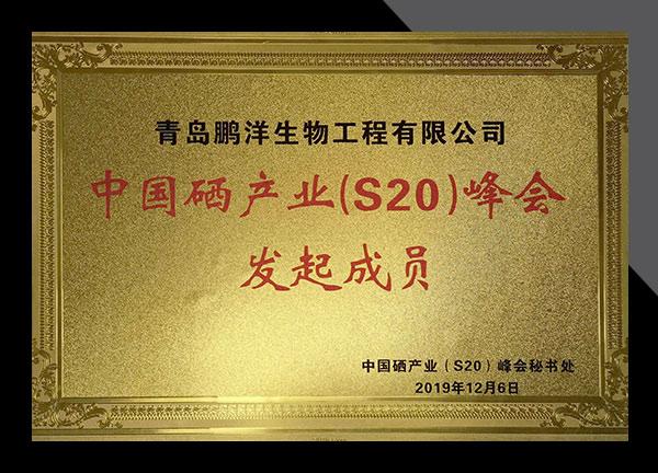 zizhi21417-1