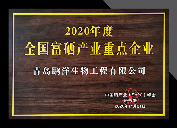 zizhi21417-2