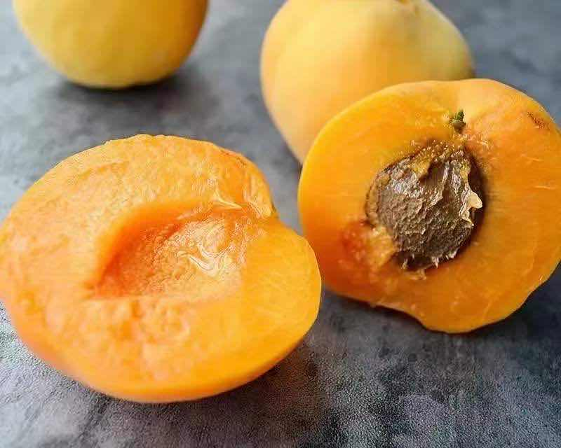 富平大接杏,一掐就化的大接杏
