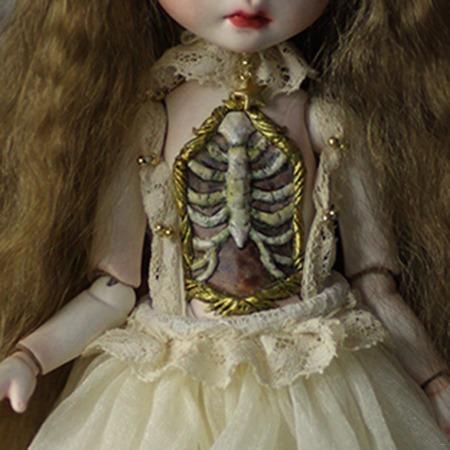 菊姬-黄金肋骨