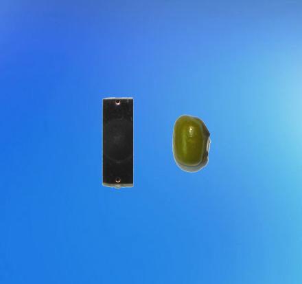 微型PCB抗金属标签 AM-202