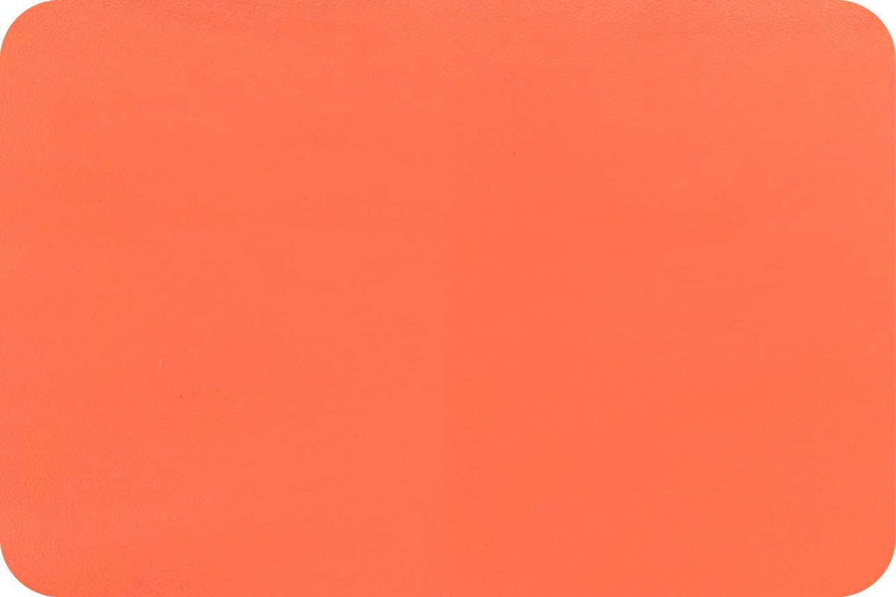 C1011 桔红