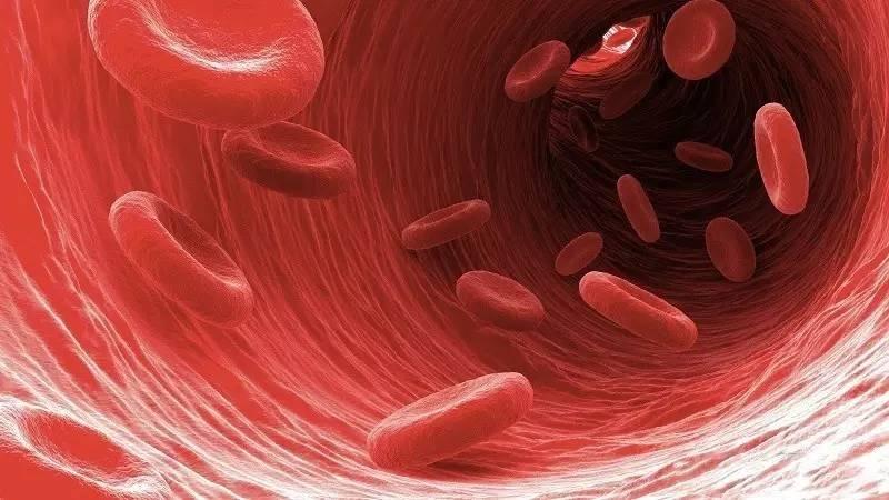 血液或骨髓移植对血液系统恶性...