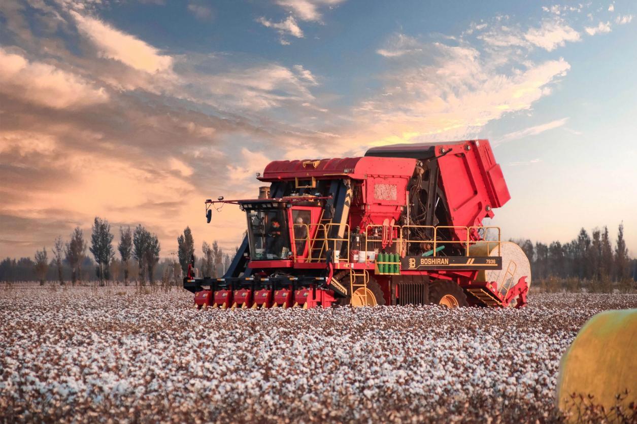 """钵施然采棉机市场占有率节节攀升,""""下蛋机""""成为新热点"""
