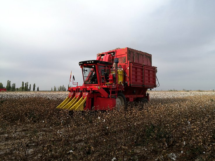 张乐:钵施然采棉机不仅为我创造了收益, 还解决了棉农的苦恼