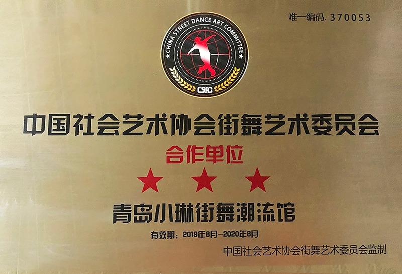 中国社会艺术协会街舞艺术委员会