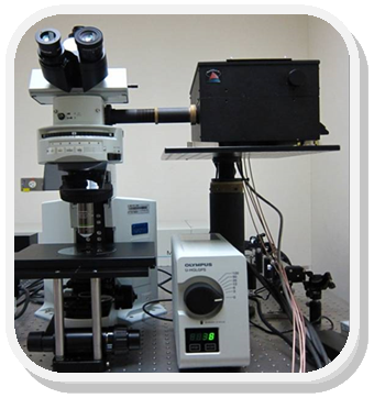 Confocal Raman and Fluorescence Microscope System
