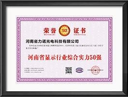 河南省显示行业综合实力50强